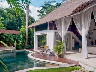 Comfortable 2 bedroom Villa in Kerobokan - Kerobokan vacation rentals