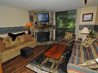 One Bedroom/One Bath Condo overlooking stream - Gatlinburg vacation rentals
