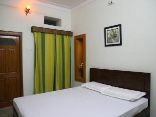 Nice 3 bedroom House in Udaipur - Udaipur vacation rentals