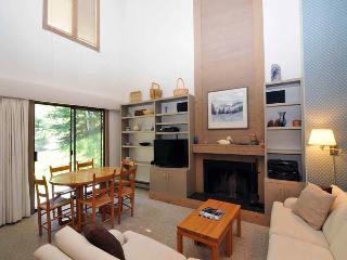 Greyhawk Condominiums 26 - Ketchum vacation rentals