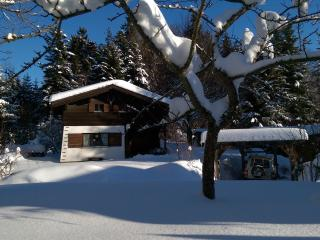 Nice Chalet with Internet Access and Short Breaks Allowed - Schwarzenberg vacation rentals