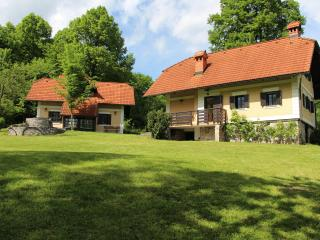 Country house 2 near Ljubljana - Zuzemberk vacation rentals