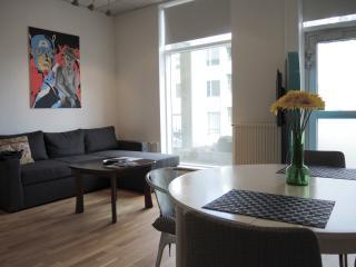 New apartment in Reykjavik city center - Reykjavik vacation rentals