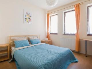 Relaxing Broadway suite near the buzz - Budapest vacation rentals