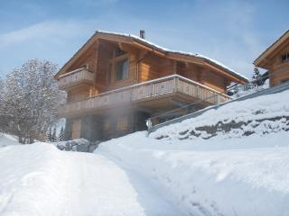 Beautiful Chalet With Pool Haute Nendaz nr Verbier - Nendaz vacation rentals