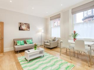 Luxury Character Soho Piccadilly Circus Apartment - London vacation rentals