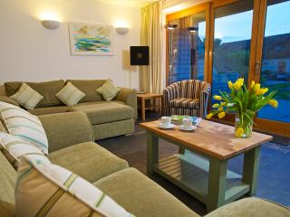 Lovely Lodge with Internet Access and Central Heating - Blackawton vacation rentals