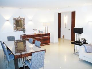 Luxury apartment Munich city center top locatation - Munich vacation rentals