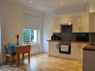 1 Bed Flat Old Street - Zone 1 London - London vacation rentals