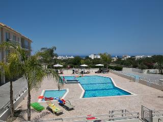 Palm Suite (Modern Two-Bedroom Spacious Apartment) - Protaras vacation rentals