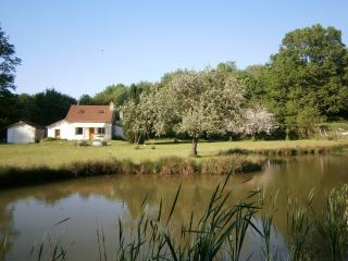 Maison de campagne et etang au coeur de la nature - Montceau les Mines vacation rentals