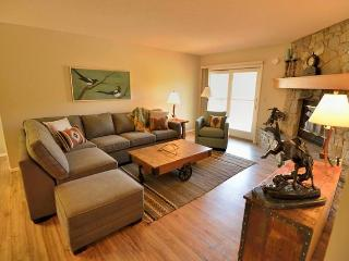 Wonderful 1 bedroom Big Sky House with Internet Access - Big Sky vacation rentals