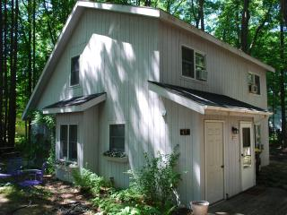 Cozy Cottage-South Beach, kids corner, downtown - South Haven vacation rentals