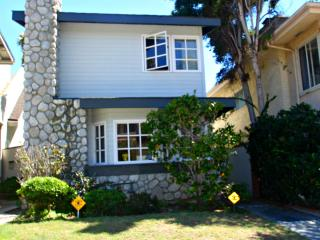Coastal Breeze - steps to Windansea Beach - La Jolla vacation rentals