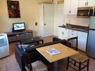 NW Downtown Apt on The Max The Pearl / Old Town - Portland vacation rentals