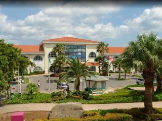 La Cabana Beach Resort and Casino - Oranjestad vacation rentals