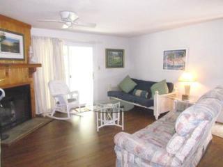263 Driftwood Villa - Wyndham Ocean Ridge - Edisto Beach vacation rentals