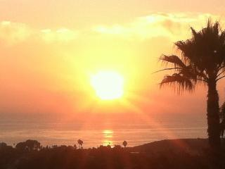 Peaceful Paradise - San Clemente vacation rentals