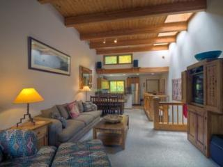 Riverside A203 - Telluride vacation rentals