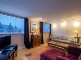 Telluride Lodge #506 (2 bedrooms, 2 bathrooms) - Telluride vacation rentals