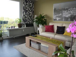 Beautiful 1 bedroom Condo in Antwerp - Antwerp vacation rentals