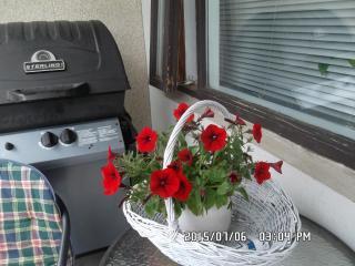 Nice 2 bedroom Vacation Rental in Kopavogur - Kopavogur vacation rentals