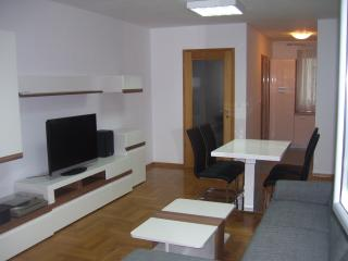 Apartment near center of Zagreb for 3-5 guests - Zagreb vacation rentals