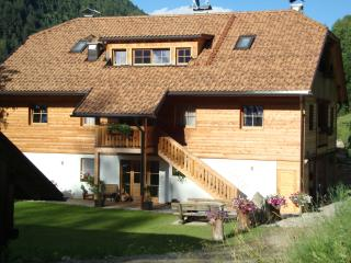 Nice Condo with Internet Access and Central Heating - Vandoies vacation rentals