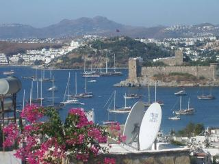 HOLIDAY HOUSE IN THE  HEART OF BODRUM - Bodrum vacation rentals