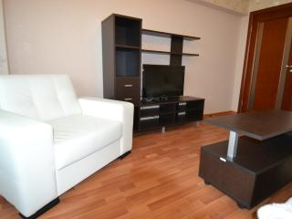 Holiday apartment in Moscow - Moscow vacation rentals
