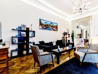 135m2 superior 3bedroom ap. A/C and WI-FI CITY37 - Budapest vacation rentals
