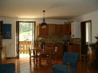 Lovely Condo with Satellite Or Cable TV and Outdoor Dining Area - Collio vacation rentals