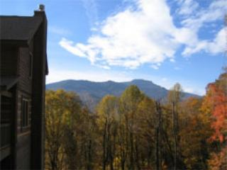 Shadow Mountain Cabin - Banner Elk vacation rentals