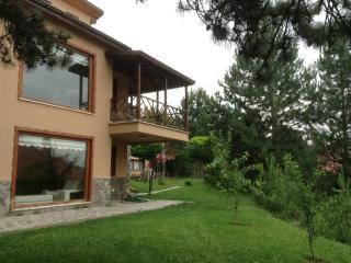 Nice Chalet with Internet Access and Hot Tub - Bolu vacation rentals