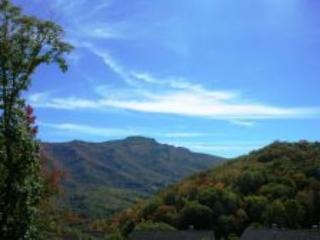 Hawks Peak 203 - Seven Devils vacation rentals