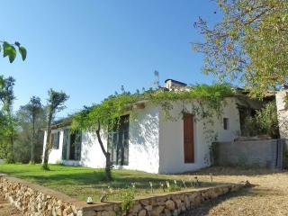 "Amazing landscape - Finca ""Es Sapins"" - WIFI - Son Cervera vacation rentals"