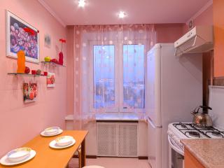 Apartment in Old Moscow - Taganskaya - Moscow vacation rentals