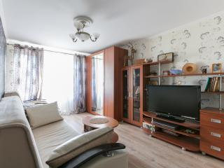 Apartment Krokus in Moscow - Moscow vacation rentals