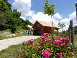 Le Rouge Gorge chalet de montagne hautes alpes - Veynes vacation rentals
