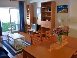 One bedroom apartment in the Lisbon Coast - Paco de Arcos vacation rentals