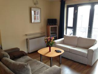 Private room in the heart of Dublin - Dublin vacation rentals