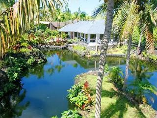 Perfect 2 bedroom Kapoho House with Internet Access - Kapoho vacation rentals