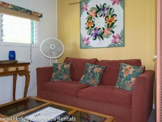 Comfortable 1 bedroom Kapoho House with Internet Access - Kapoho vacation rentals