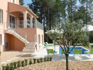 Vaison-La-Romaine, Villa 10p in the vineyards, exceptional comfort - Mérindol-les-Oliviers vacation rentals