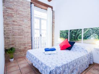 COZY BRIGHT 2 BALCONY CITY CENTER - Valencia vacation rentals