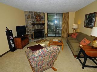 One Bedroom/ One Bath Condo - Gatlinburg vacation rentals