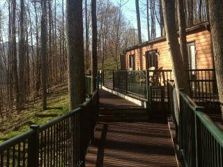 2 bedroom Cabin with Deck in Elkins - Elkins vacation rentals