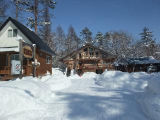 Cozy Condo with Deck and Internet Access - Hakuba-mura vacation rentals