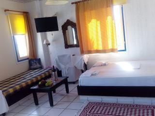 Manuelle Apartment - Malia vacation rentals