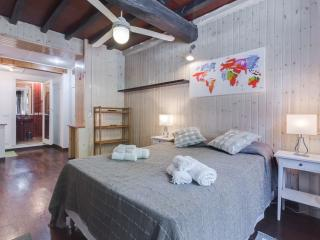 Trastevere Suite - Rome vacation rentals